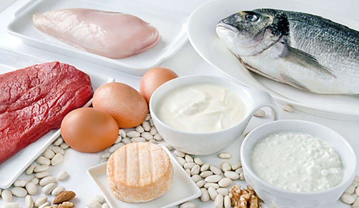 Топ-10 белковых продуктов для роста мышечной массы